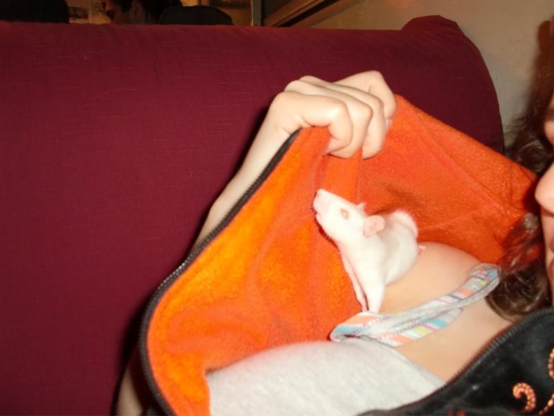 Les bébés d'Hold It Against Me Cimg8513