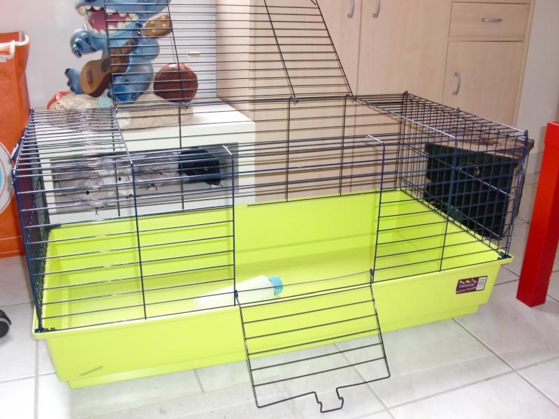Cherche cage style cage à lapin Cimg9610