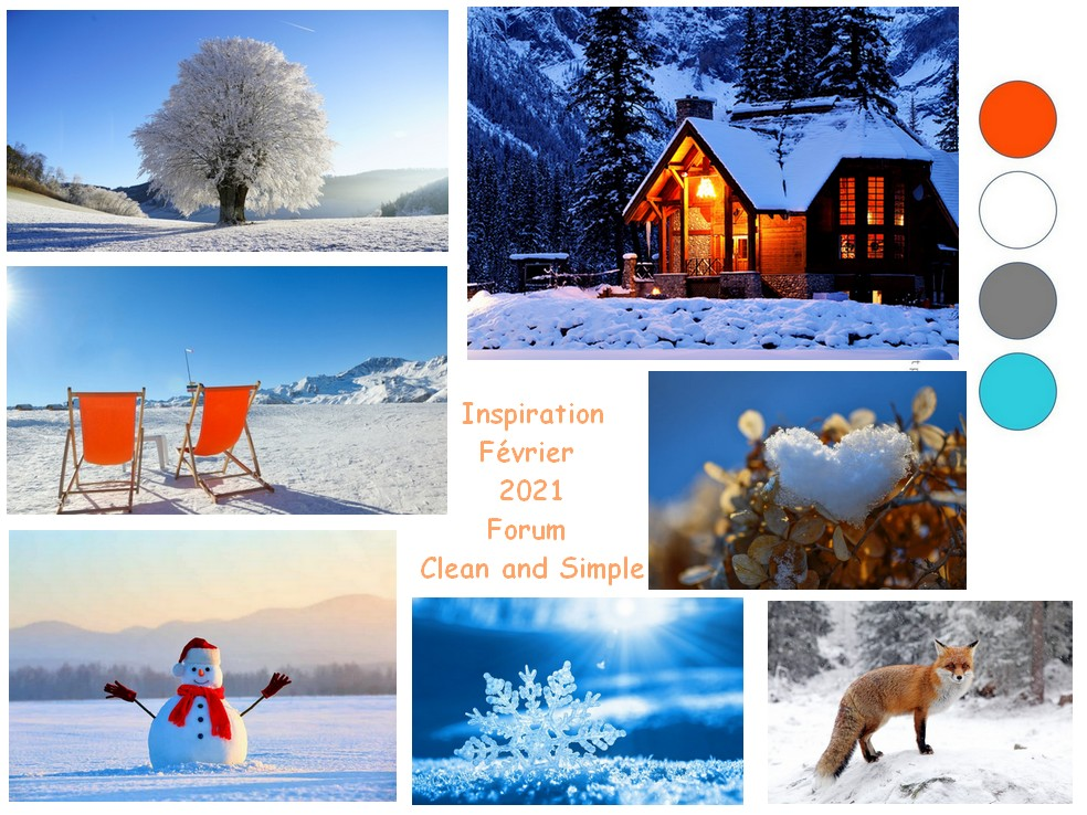 Février 2021 : Inspiration Inspi_12
