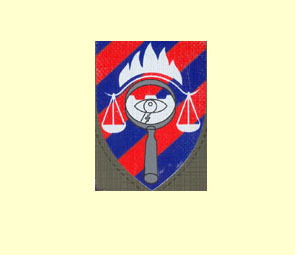 Badge et insigne de Tsahal. 02mpin10