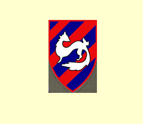 Badge et insigne de Tsahal. 03mpso10