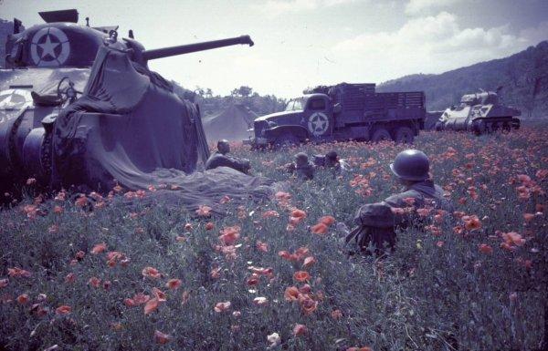 Français dans les Abbruzzes(1943/1944) 26199710
