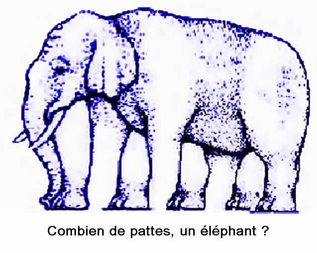 UN ELEPHANT CA TROMPE ENORMEMENT Illusi12