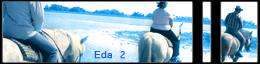 Equestra Dream Academy C19_co10