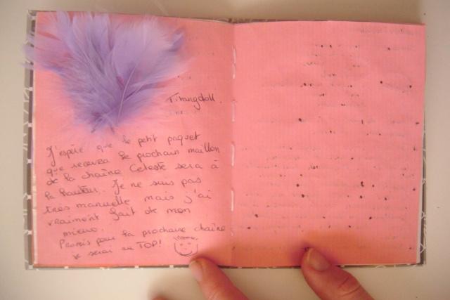 Chaîne Céleste 2011-2012 n°2 [ça avance, ça avance] - Page 46 Dscf0318