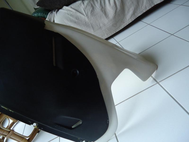 résine polyester Dsc09012