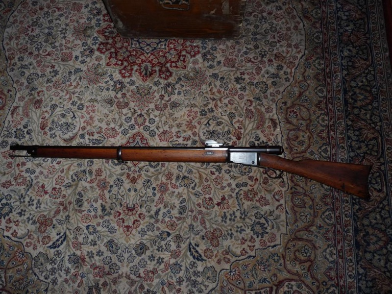 Vetterli M81 P1080531