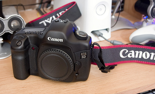 [VENDU] Reflex Canon EOS 5D 29183810