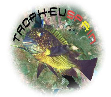 TROPHEUSPAIN