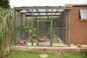 My Aviary Img_0411