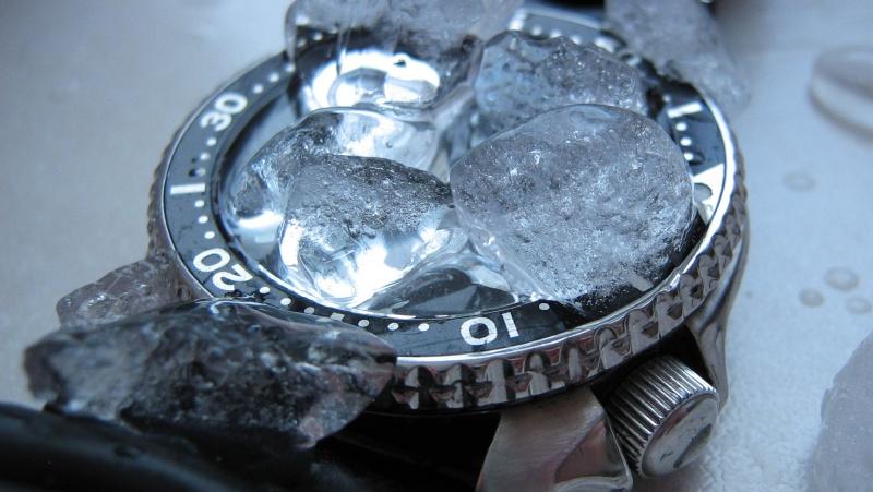 L'age de glace 3... (diver inside) Img_5911
