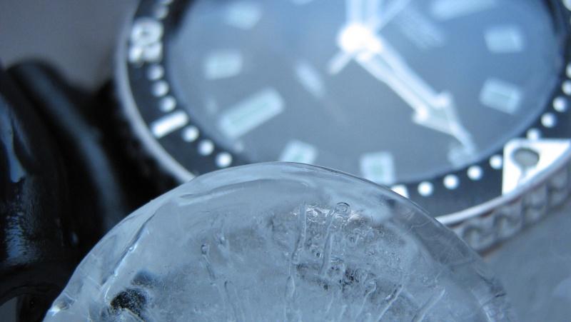 L'age de glace 3... (diver inside) Img_5916