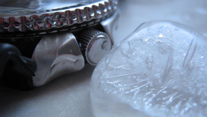 L'age de glace 3... (diver inside) Img_5917