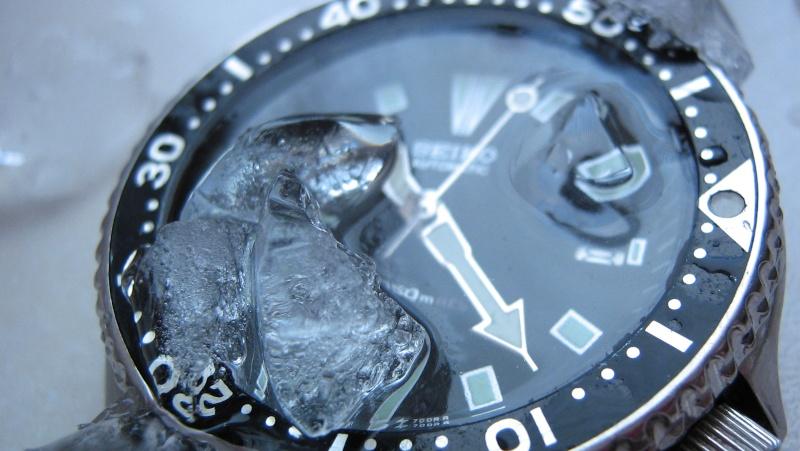 L'age de glace 3... (diver inside) Img_5920