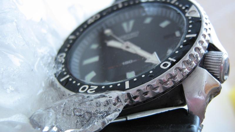 L'age de glace 3... (diver inside) Img_5922