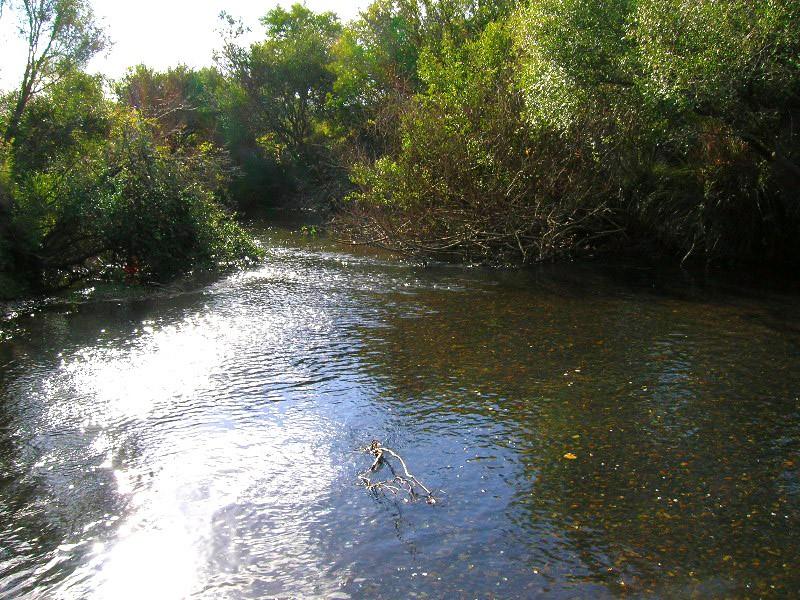 pêche en uraguay Caada310