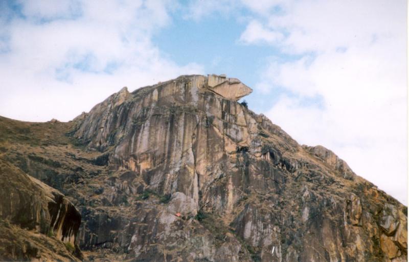 Madagascar Camele10