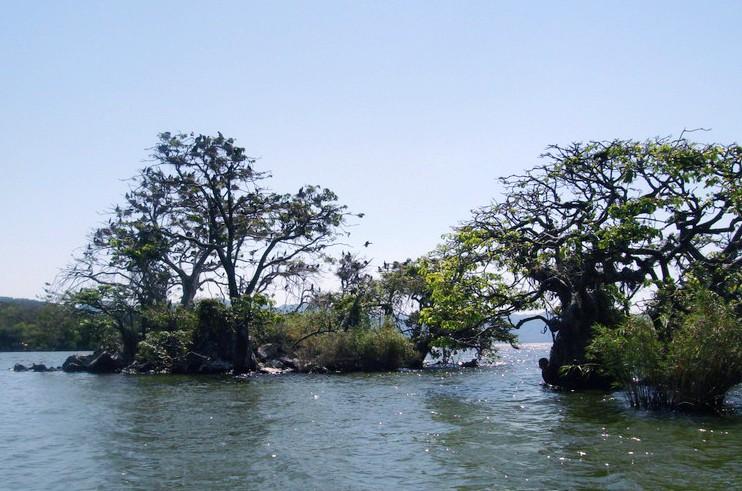 Lago Catemaco Veracruz Mexico Imgp1111