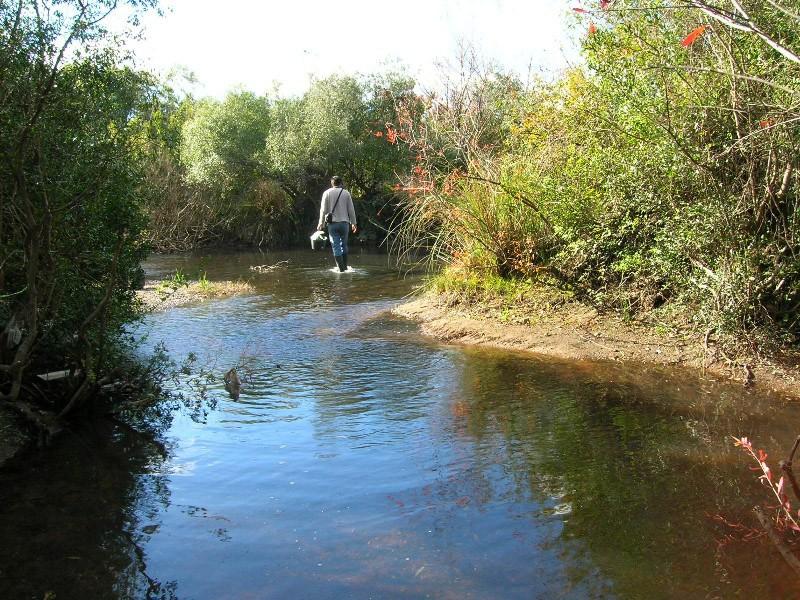 pêche en uraguay Juanca10