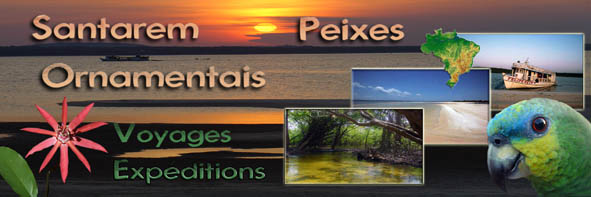 expedition and discovered the Amazon River Santar13