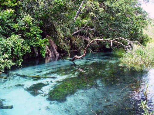 Le fleuve Rio Sucuri Sucuri24