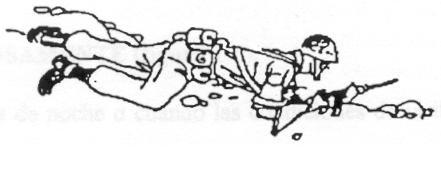 Manuales Tácticos. 311