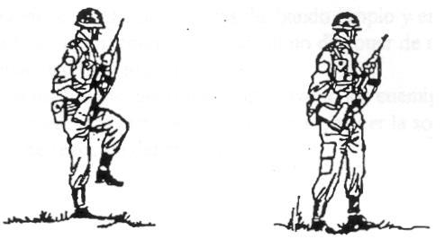 Manuales Tácticos. 511