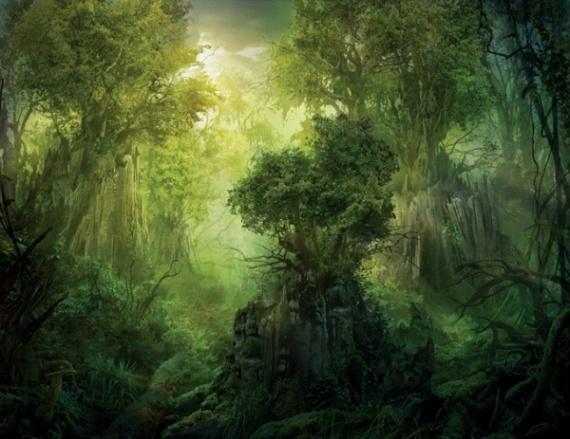 Recueil des Elfes ~ Royaume d'Aradrïèl Philip10