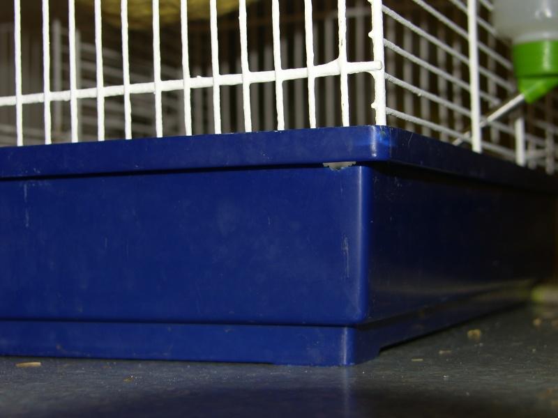 [VEND] cage à deux étages _h106017