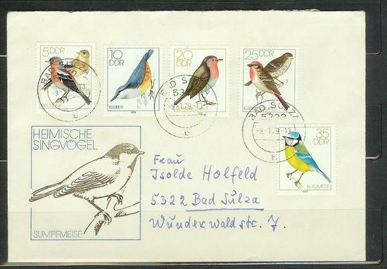 Vögel Vogel210