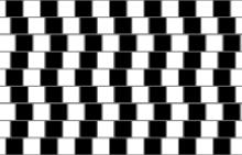 Illusions d'optique difficiles à croire Caf_wa10