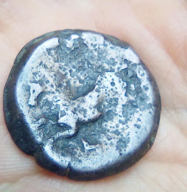 Unité de bronze numide Massinissa / Micipsa Img_2035