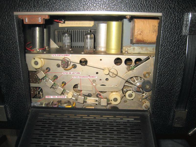 Echos Vintage Echole20