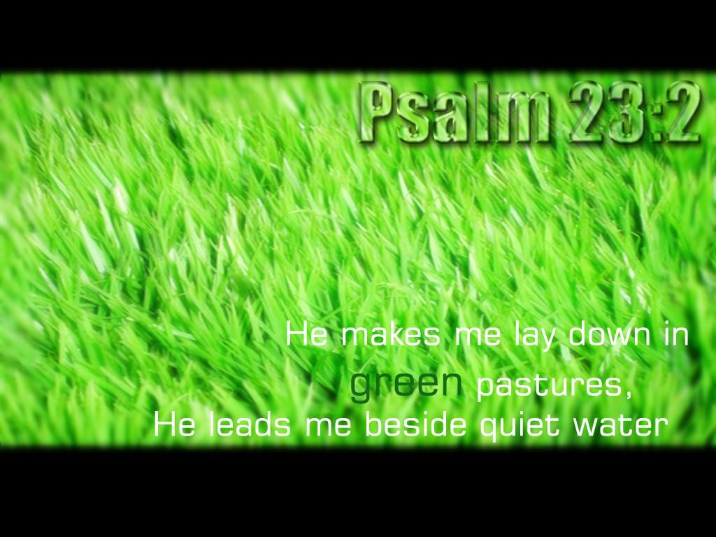 Psalm 23:2 Psalm_10