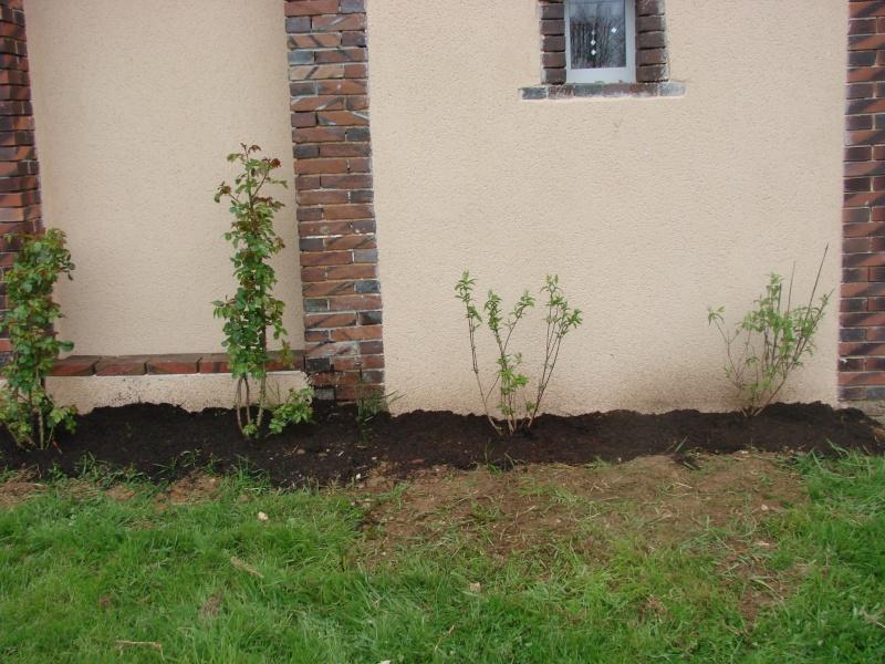 ma petite terrasse Dsc01012