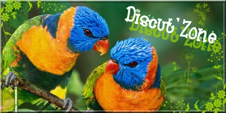 Discut' zone