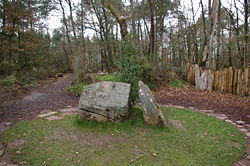 Forêt de Brocéliande Le_tom10
