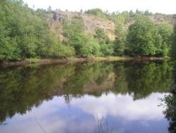 Forêt de Brocéliande Miroir10