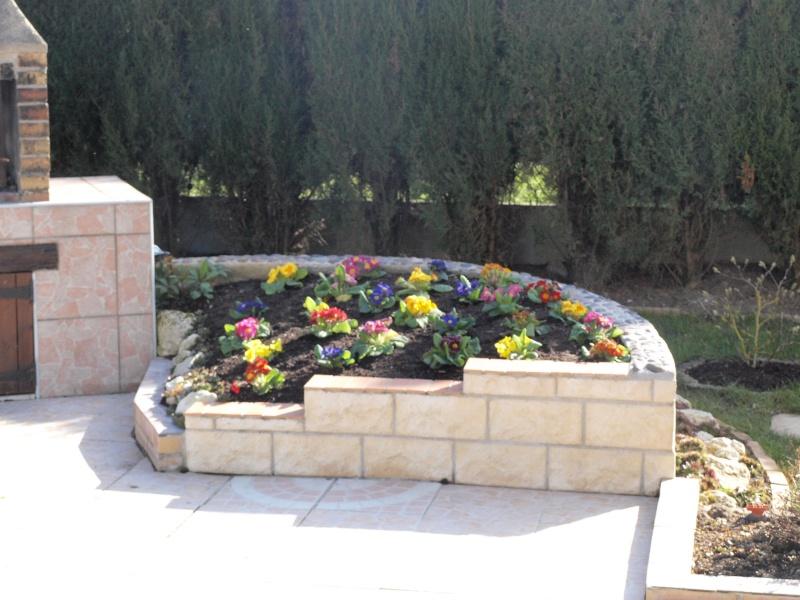 mon jardin P3096210