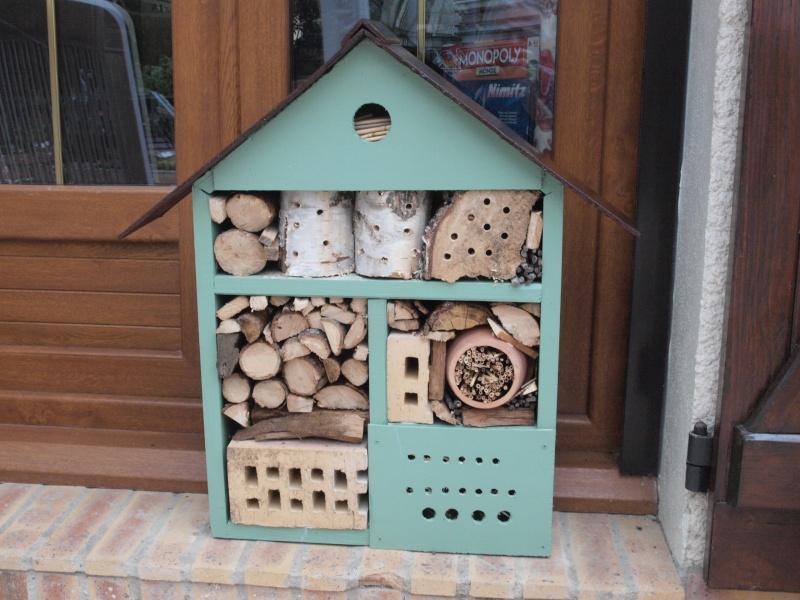 mon jardin P5046210