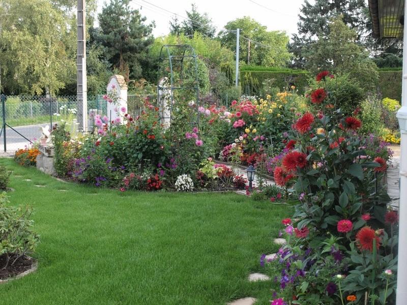 mon jardin P8224516