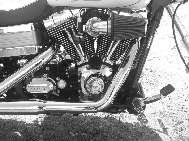 DYNA WIDE GLIDE, combien sommes-nous sur Passion-Harley Nb_mot10