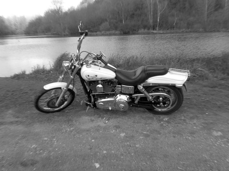 DYNA WIDE GLIDE, combien sommes-nous sur Passion-Harley Nbfl10
