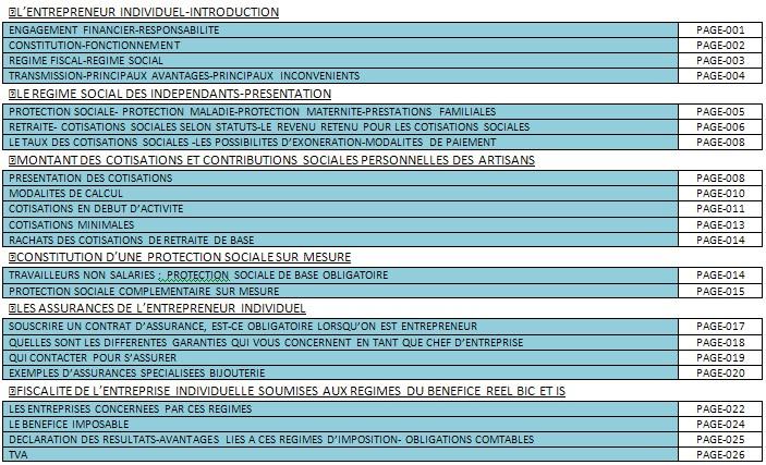 DOCUMENT SUR LE STATUT JURIDIQUE,REGIME SOCIAL ET FISCALITE DE L'ENTREPRENEUR INDIVIDUEL EN BIJOUTERIE-JOAILLERIE 312
