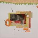 Galerie d'Anneso (nouv info du 28/12 p8) - Page 3 Dsc02210