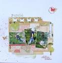 Galerie d'Anneso (nouv info du 28/12 p8) - Page 3 Dsc02610