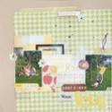 Galerie d'Anneso (nouv info du 28/12 p8) - Page 3 Dsc03323