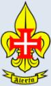 Comemorações do 82 Aniversário do VII Agrupamento - 14 a 16 de Março de 2008 Logo_c10