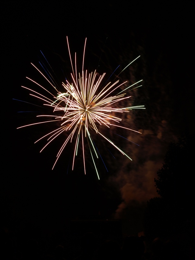 Vos feux d'artifices du 13 ou 14 Juillet Feux_d11