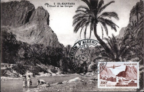 cartes postales d'algerie - Page 2 1949-511